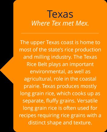 texas-text2